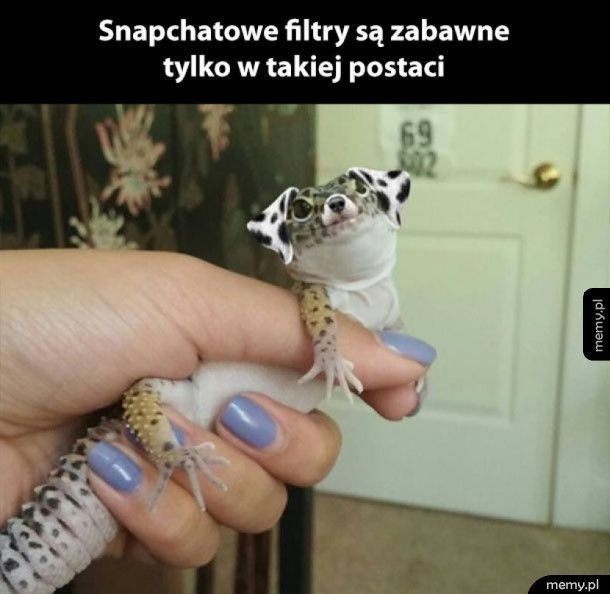 Snapczatowe filtry