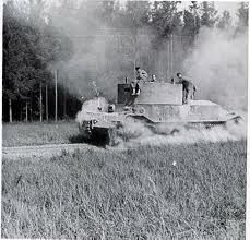 Tiger Porshe