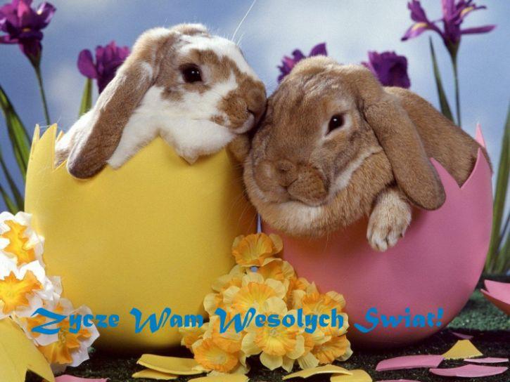 Wesołych Świąt Wielkanocy!!