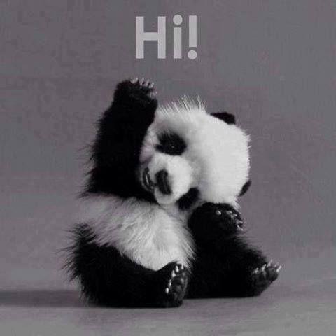 Witajcie!!!