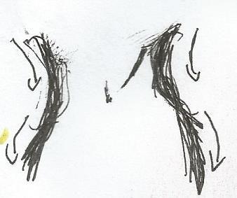 Rana Eve