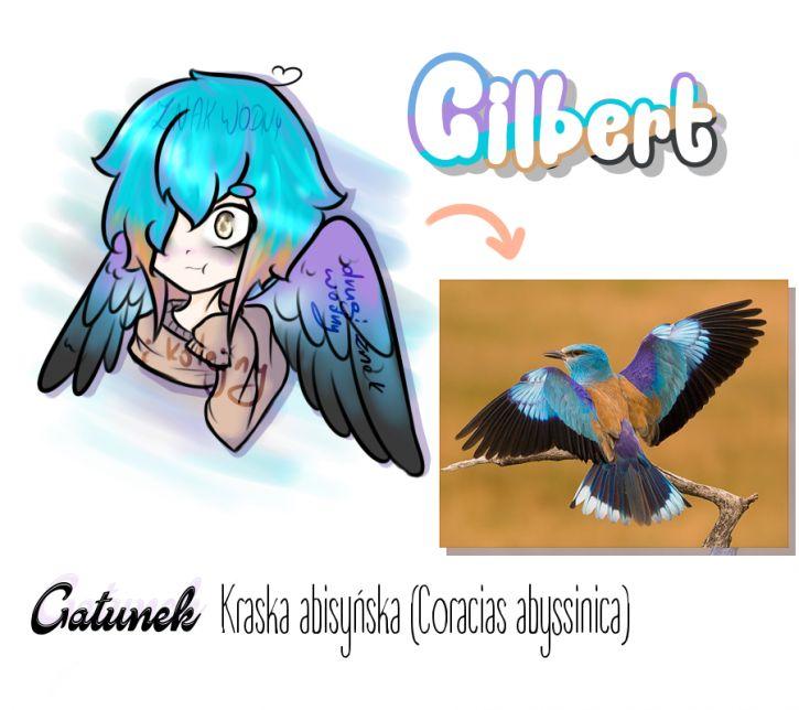 Moje dziecię - oc Gilbert