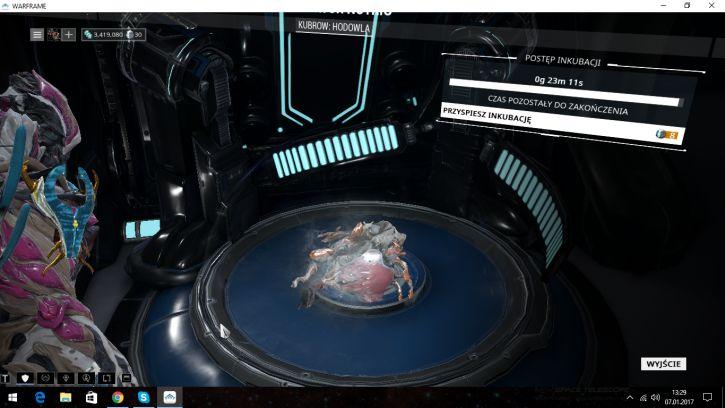 Inkubacja Helmitha(?)
