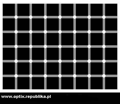 lol Złudzenie optyczne