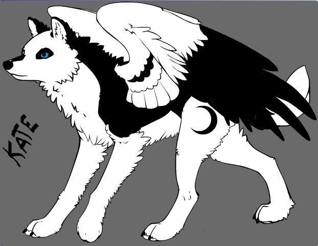Moja wilczyca Kate