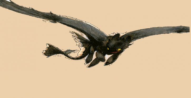 smoki:dzikie przestworza