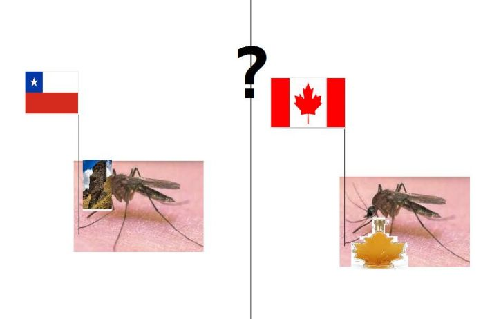 chile czy kanada