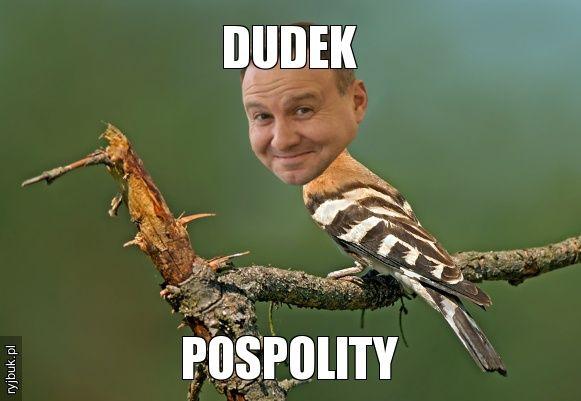 DUDEK POSPOLITY