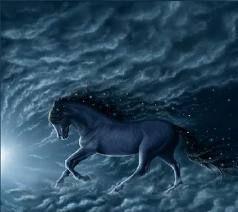 Nocny koń