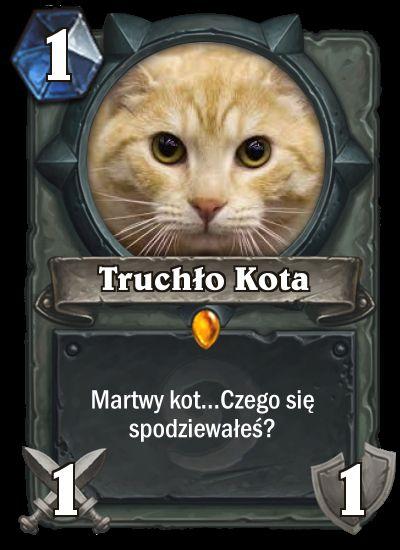 HS Truchło Kota