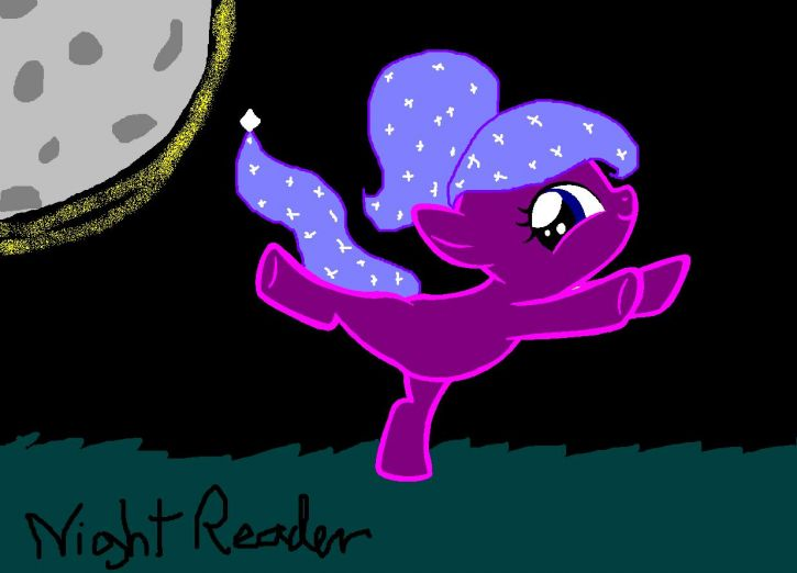 NightReader