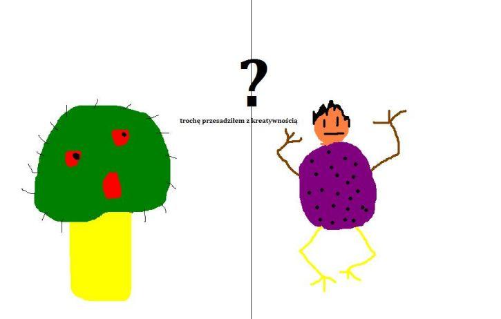 trujący grzyb czy żaba