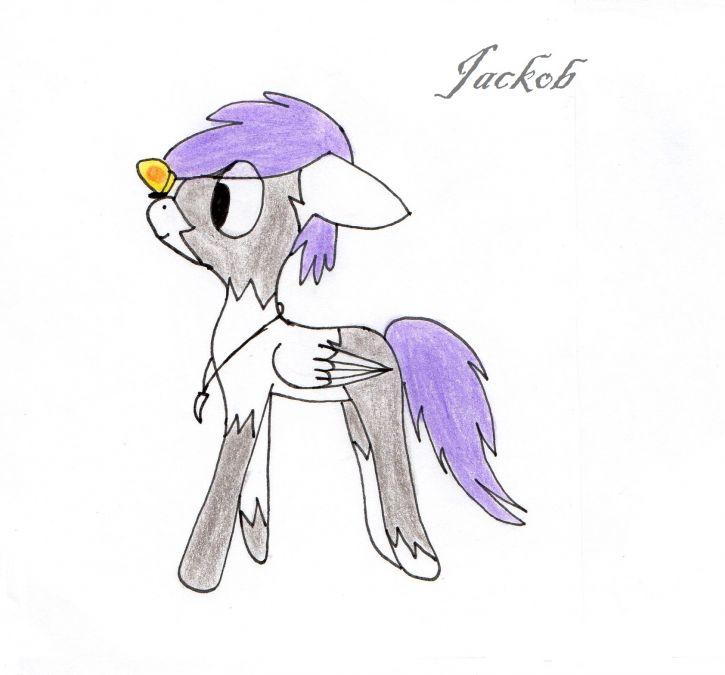 Jackob
