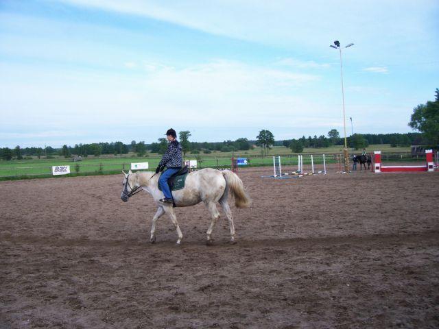 javs koń 2 :)