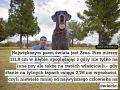Największy pies na świecie Zeus