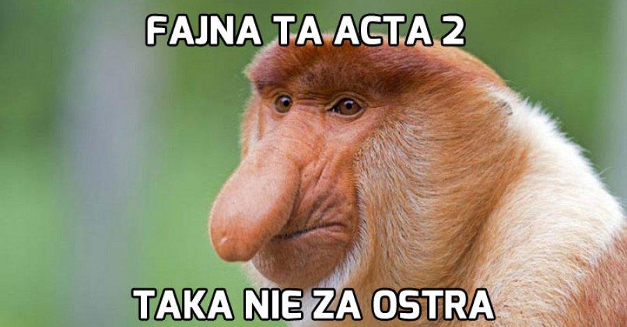 Memy uratowane! Co przyniesie ACTA 2